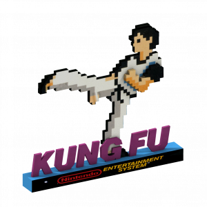 The black Box Nes 3d KungFu
